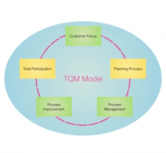 TQM Model preview